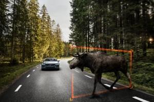 K1600 170159 Exterior Large Animal Detection Volvo S90 1